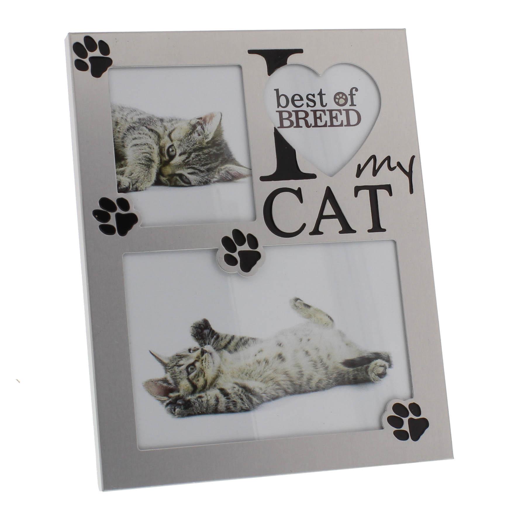 I love my Cat - Fotorahmen für Katzenliebhaber